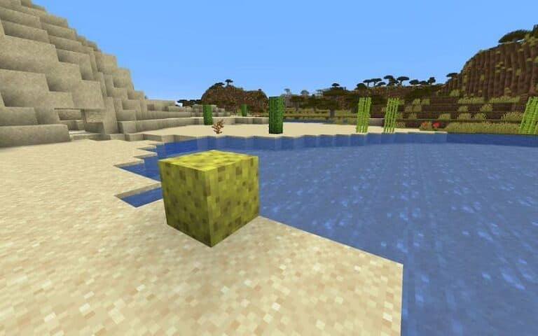How to get sponges in Minecraft